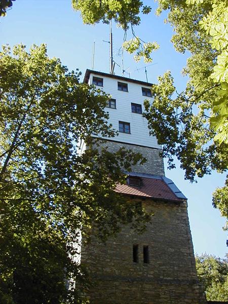 Aussichtsturm am Moritzberg, Nahaufnahme
